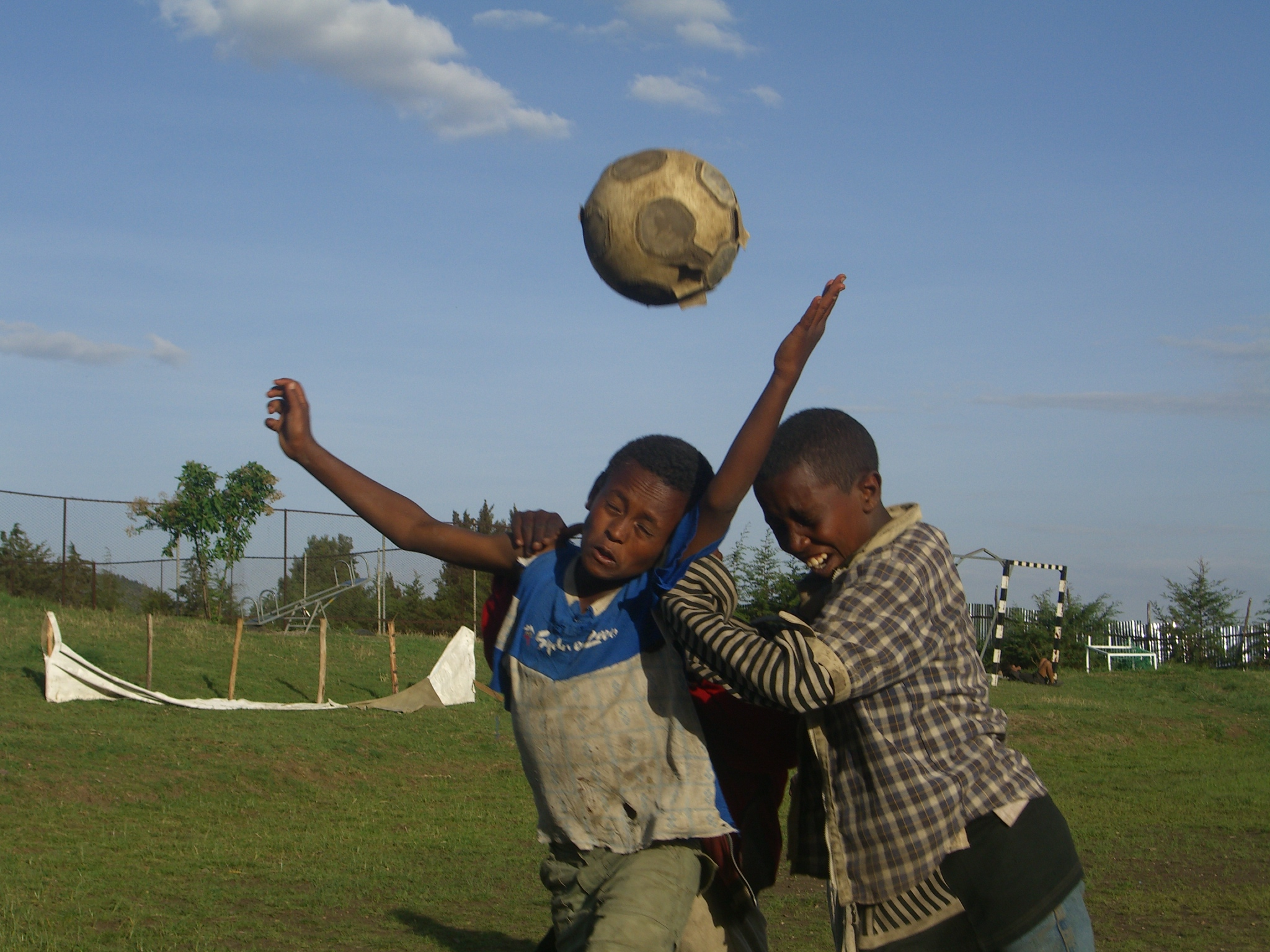 Sport During Free Time 2006