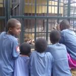 Children Visiting Zoo 2007