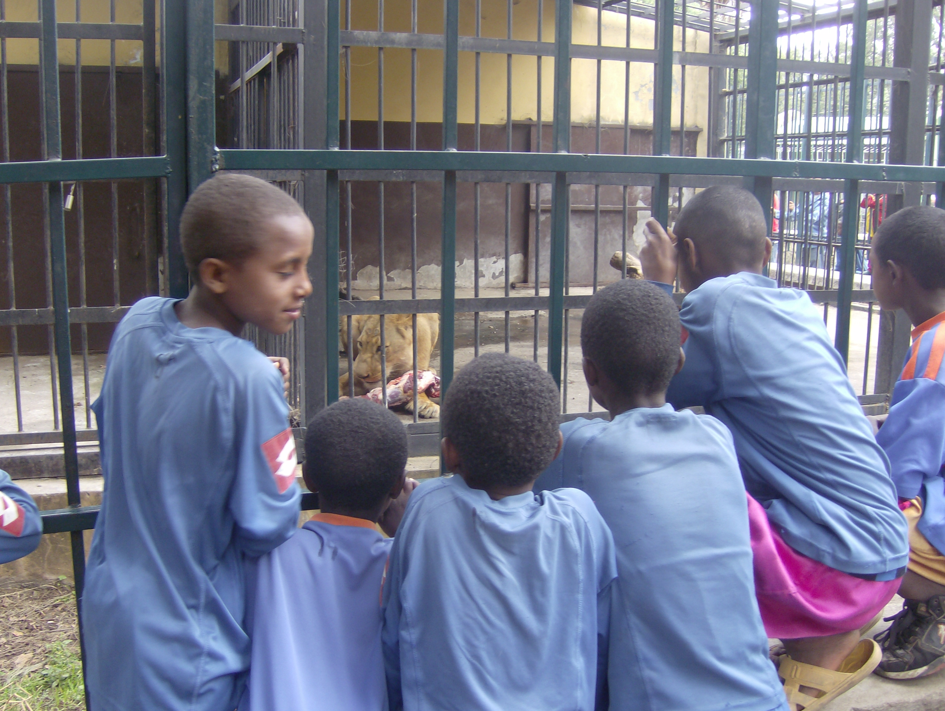 Children Visiting Zoo 2007